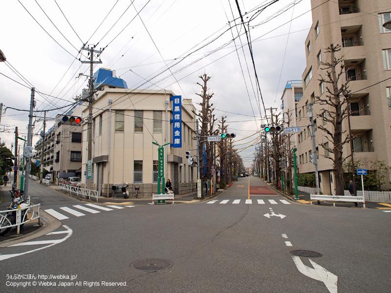 小山七丁目交差点と目黒信用金庫 - photo16
