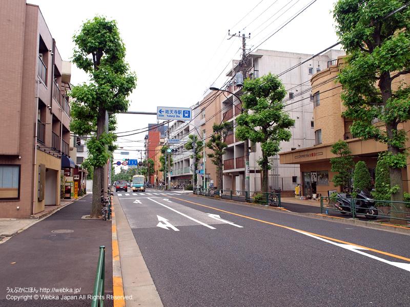 駒沢通り - photo17