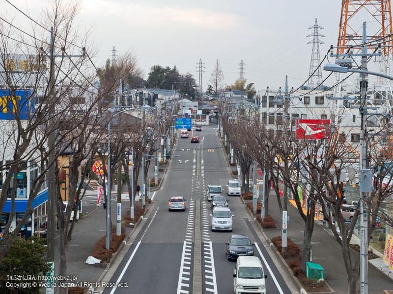 中田町東原交差点に突き当たる道路 - photo12
