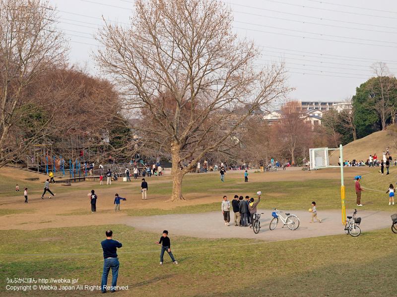 岸根公園 - photo12