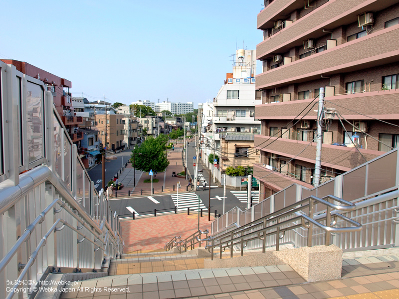 東横フラワー緑道 - photo16