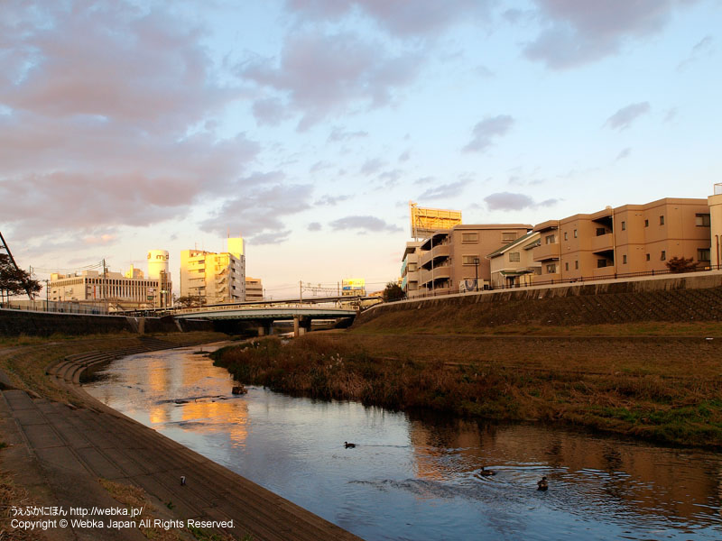 戸塚駅のそばを流れる柏尾川 - photo17