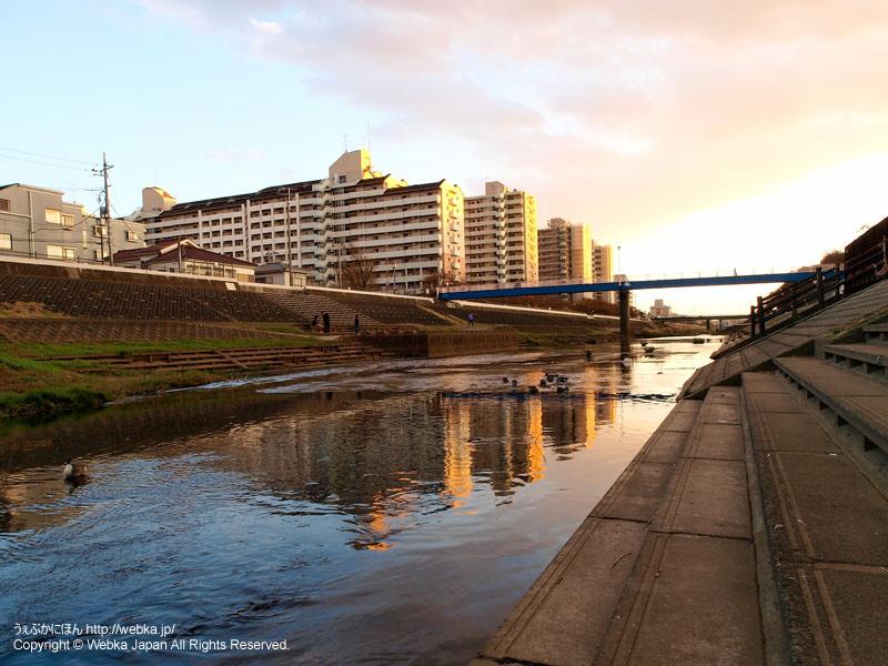 戸塚駅のそばを流れる柏尾川 - photo18