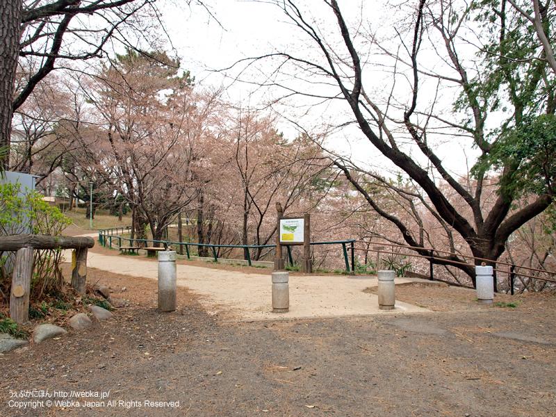 篠原園地 - photo18
