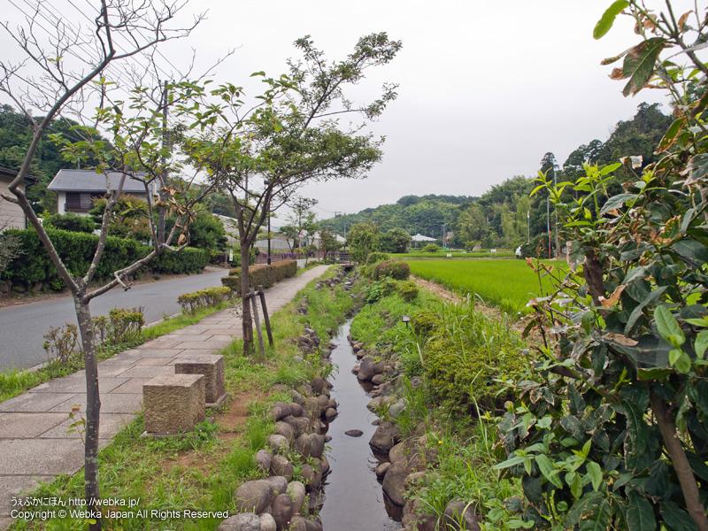 舞岡町小川アメニティ - photo15