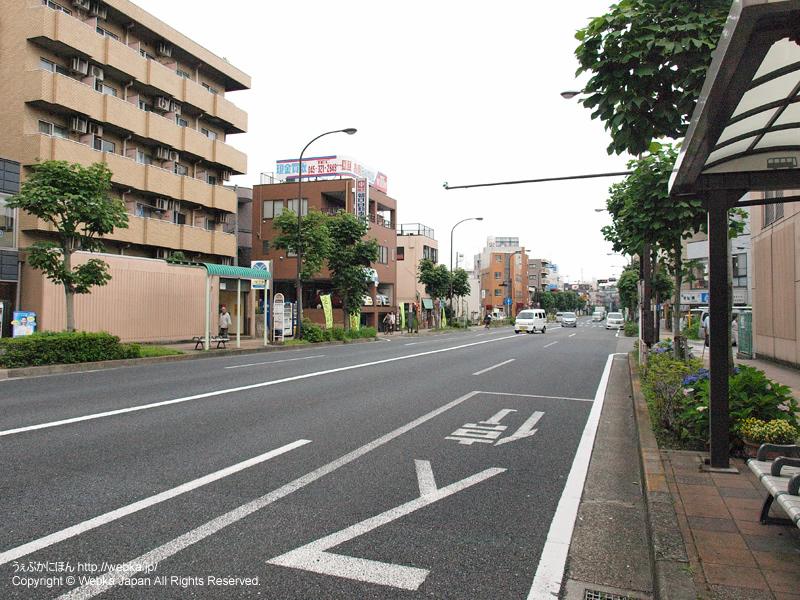 三ツ沢下町駅 駅前の国道1号 - photo11