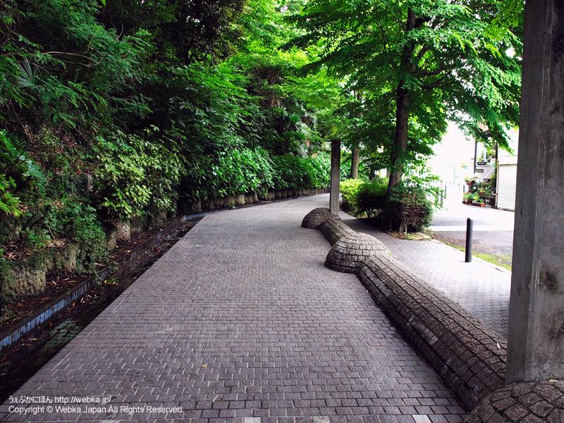 三ツ沢せせらぎ緑道 - photo12