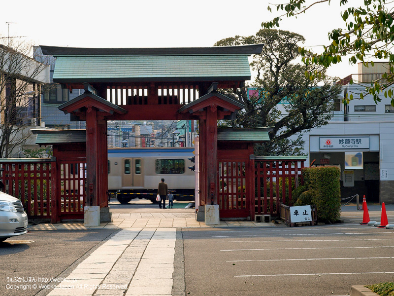 妙蓮寺からみた妙蓮寺駅と踏切 - photo7