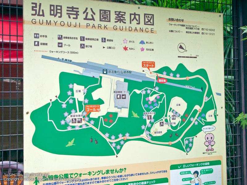 弘明寺公園の画像2