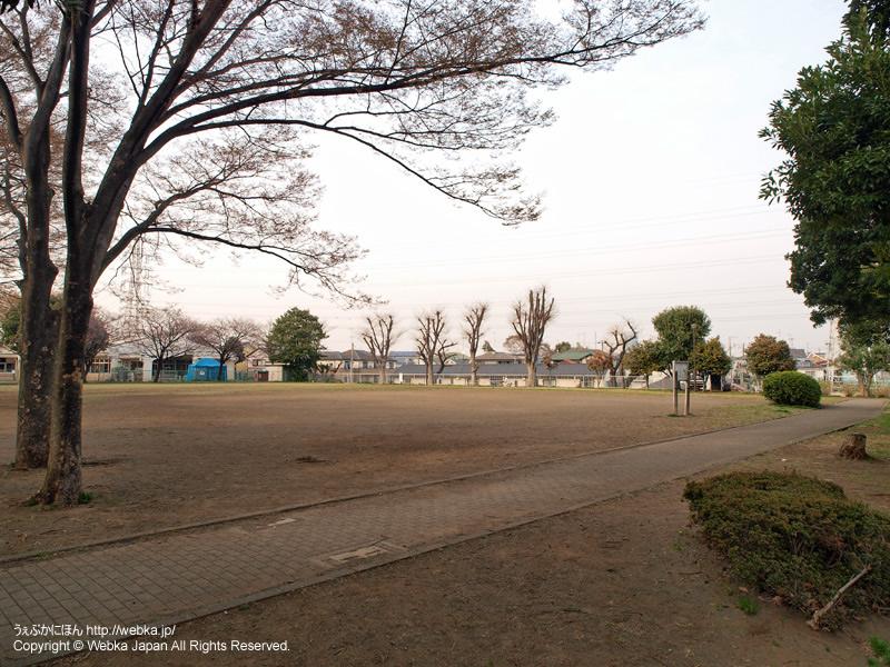 岸根公園の画像7