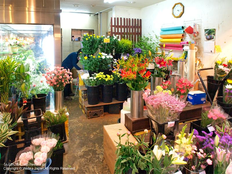花秀 白楽店の画像4