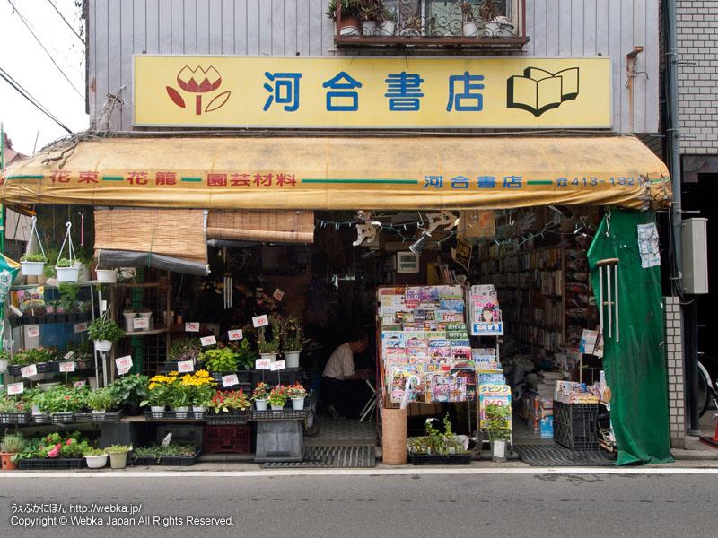 河合書店(かわい花店)の画像5