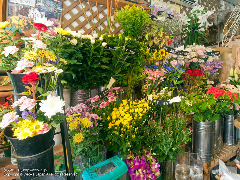 河合書店(かわい花店)の画像4