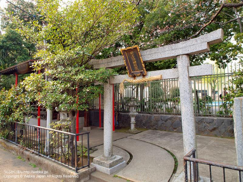 菊名池公園の画像7
