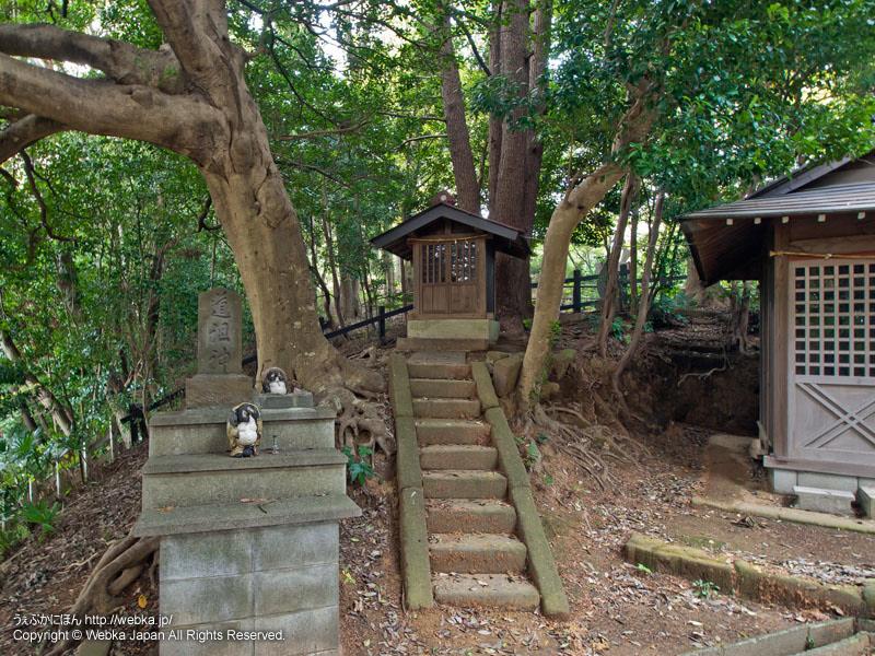 浅間神社の画像4
