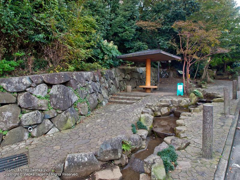 戸塚公園の画像4