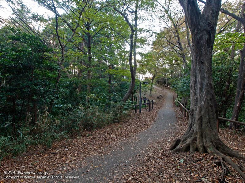 戸塚公園の画像7