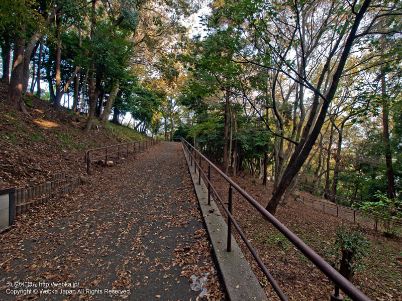 宮谷西公園の画像6