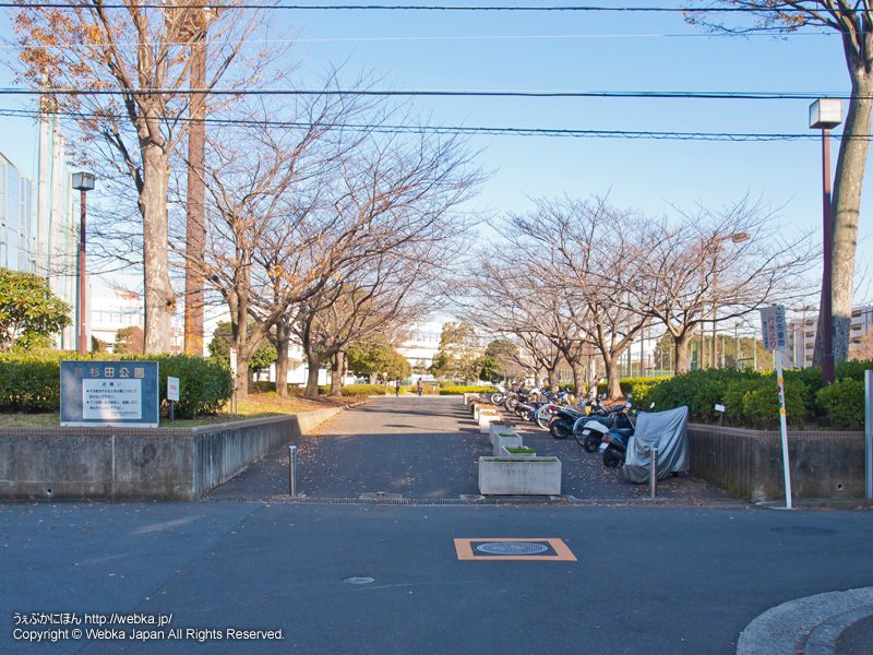 新杉田公園の画像2