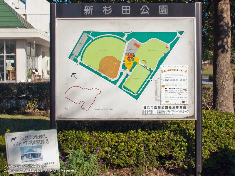 新杉田公園の画像6