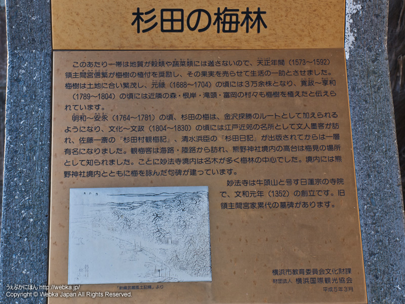 妙法寺の画像7