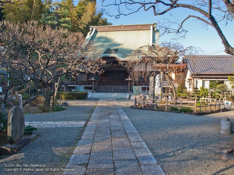 妙法寺の画像3