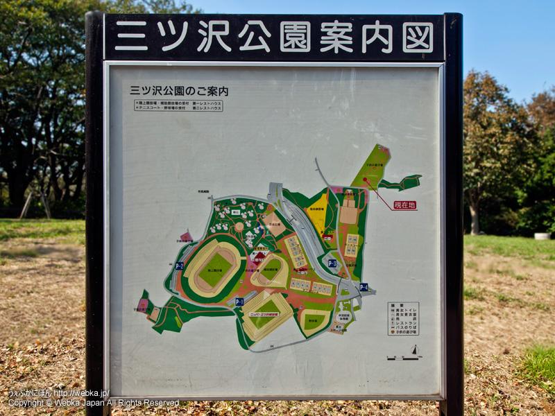 三ツ沢公園の画像2