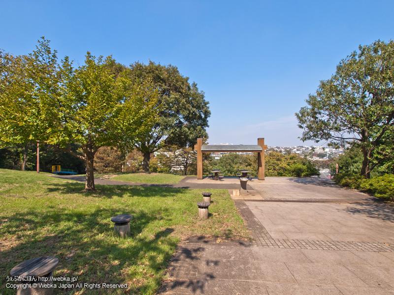 三ツ沢公園の画像6