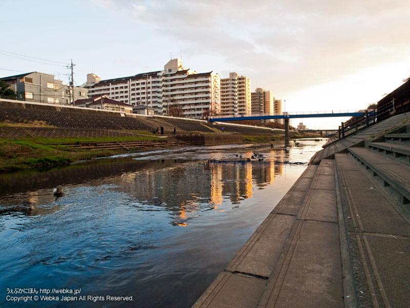 柏尾川プロムナードの画像3