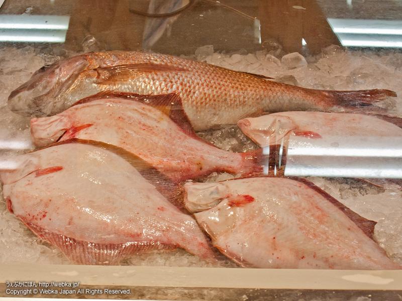 鮮魚 魚陽の画像2