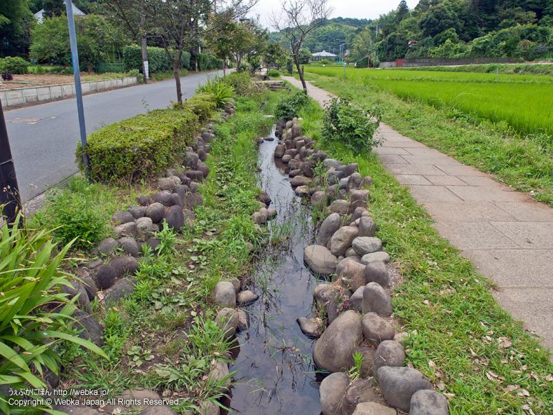 舞岡ふるさと村の画像4