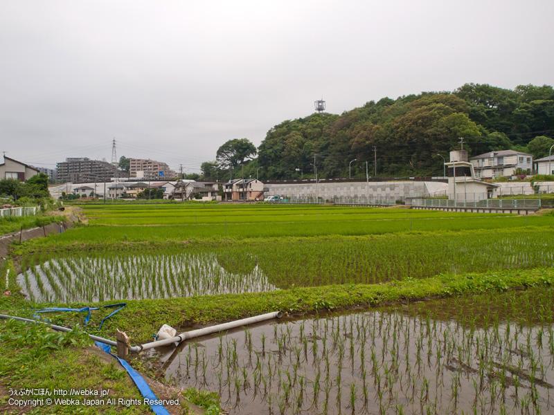 舞岡ふるさと村の画像3