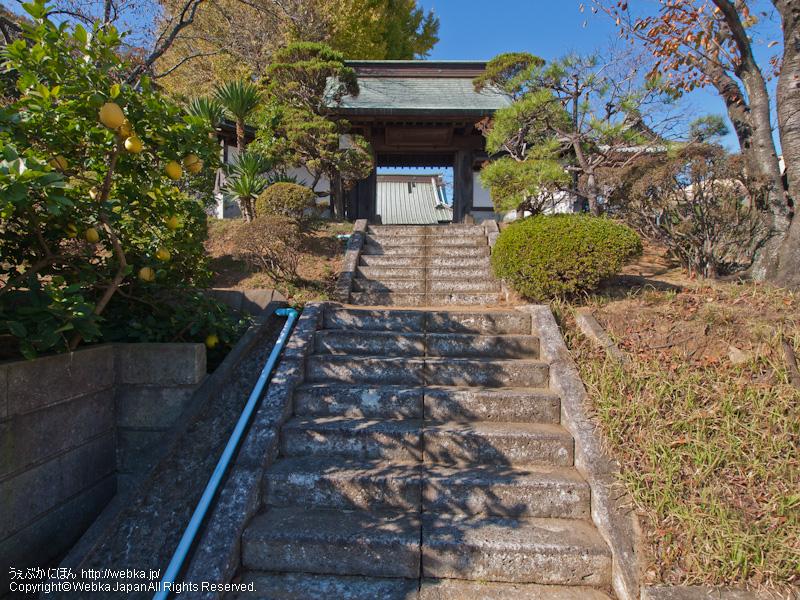 西立寺の画像3