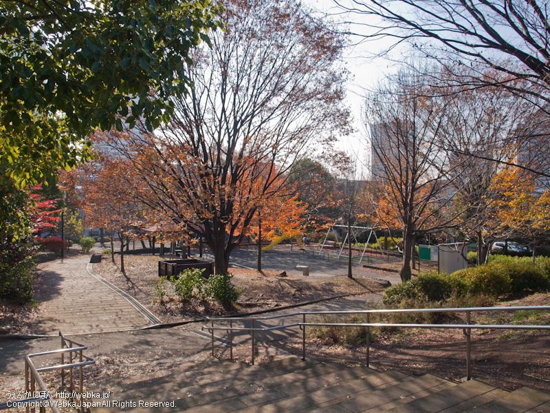 品濃中央公園の画像3