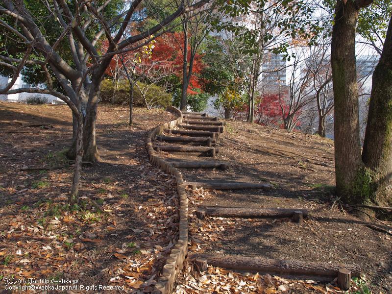 品濃中央公園の画像7