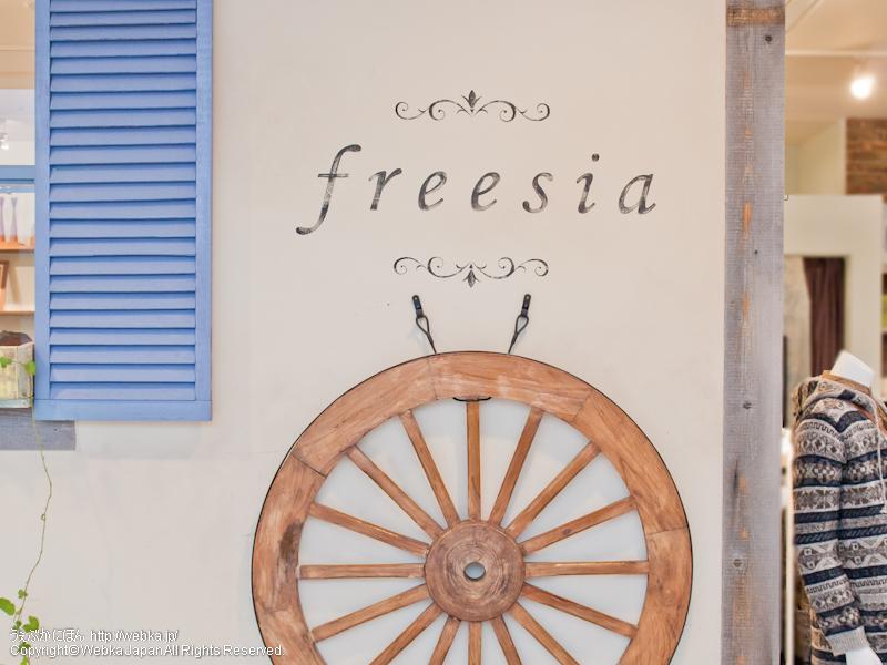 フリージアの画像1