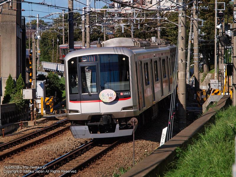東急東横線の写真