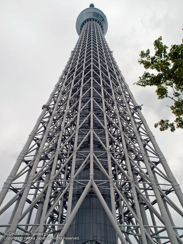 スカイアリーナから見た東京スカイツリー