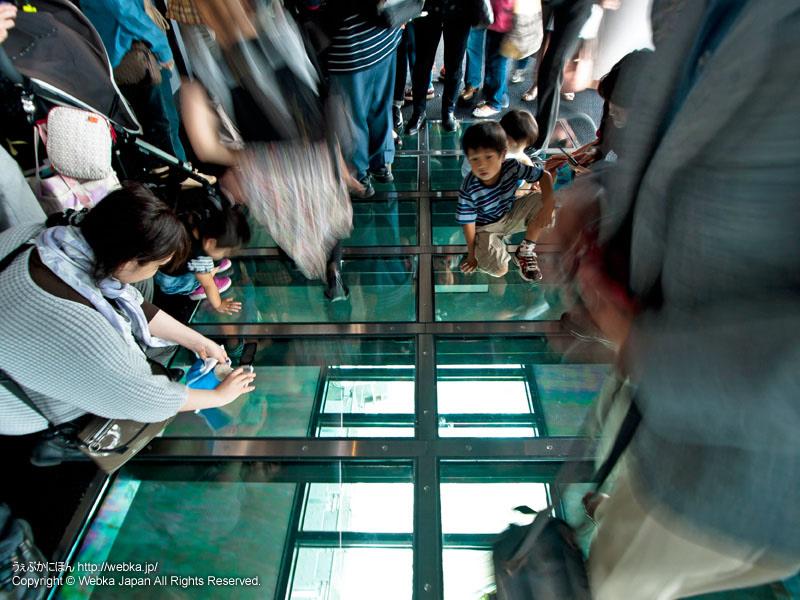 フロア340のガラス床