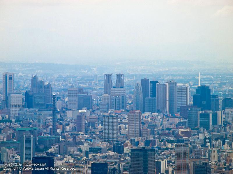 東京スカイツリー展望回廊から見た東京都庁・新宿方面
