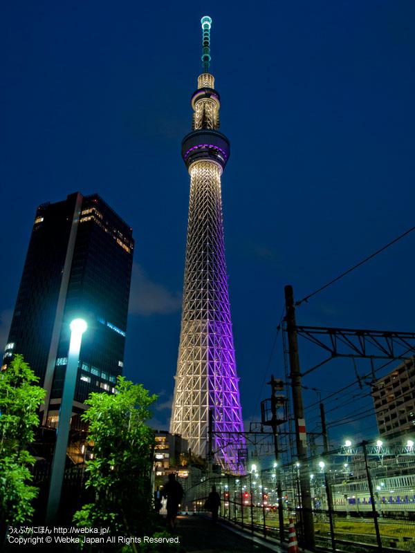 東京スカイツリーの夜景、「雅」ライティング