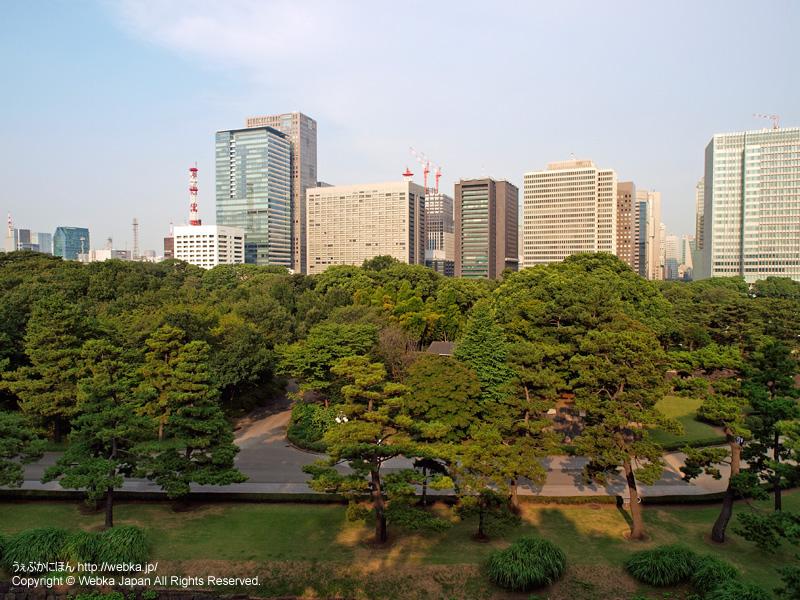皇居東御苑 展望台からの眺め