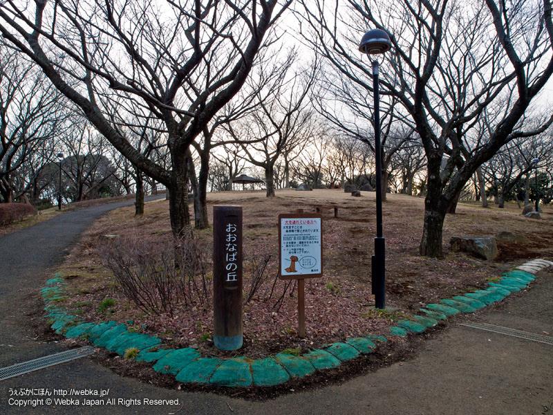 舞岡公園おおなばの丘