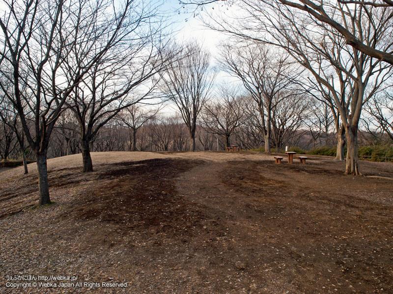 舞岡公園・ばらの丸の丘