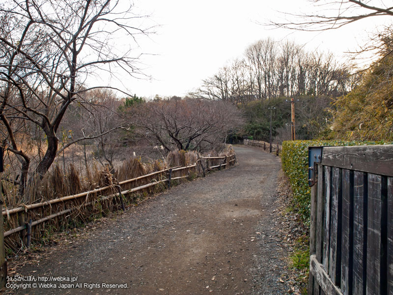 舞岡公園の北門と耕作体験田んぼ方角