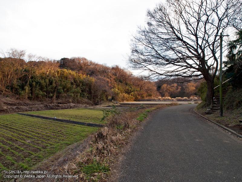 舞岡公園の景色