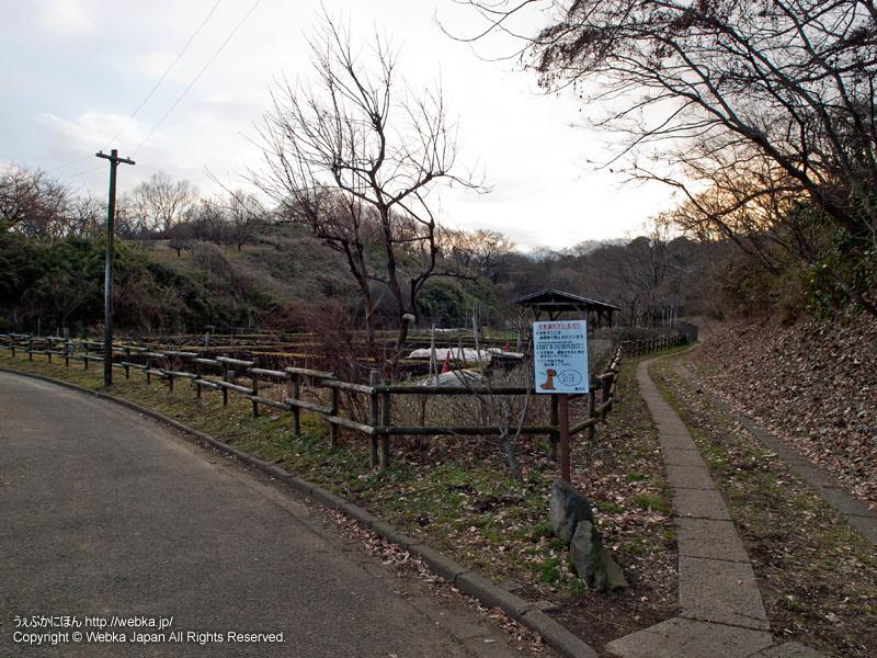 舞岡公園の体験畑