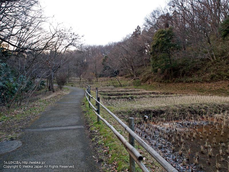 舞岡公園の瓜久保