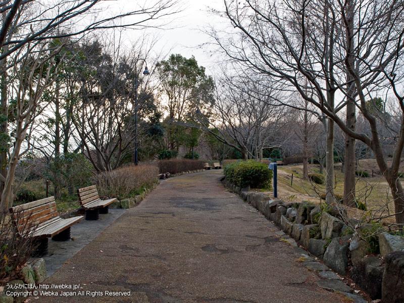 舞岡公園・こぶし広場
